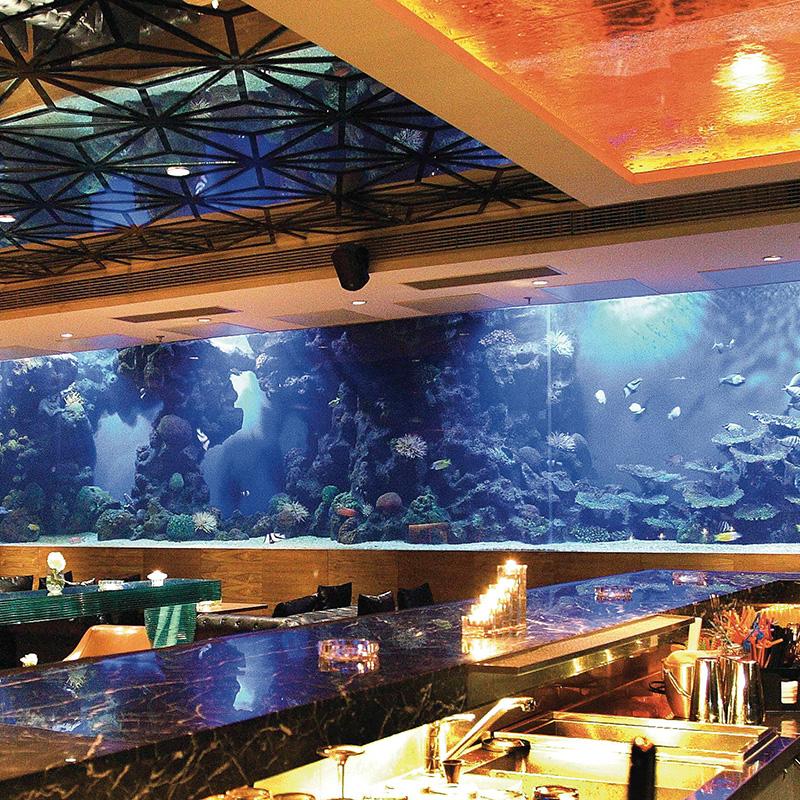 حوض الأسماك المخصص للفنادق